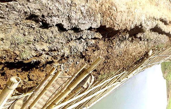 সুনামগঞ্জের ক্লোজার বাঁধে ফাটল, ৫০০০ একর জমির ধান নিয়ে কৃষকের শঙ্কা
