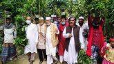 সিলেটে সীমিত পরিসরে হলো শাহজালালের 'লাকড়িতোড়া উৎসব'